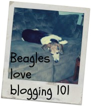 Blogging101Assignments
